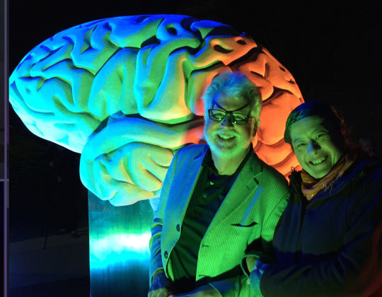 Consciousness - Limestone Brain Interactive Lighting