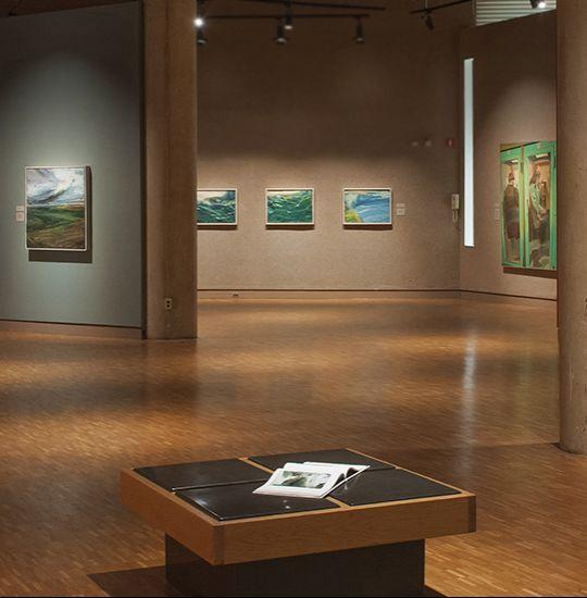 Iu Art Museum Exhibit Lighting